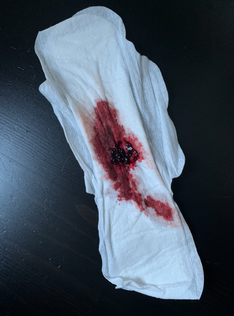 HOWWEBLEED menstruation project 18