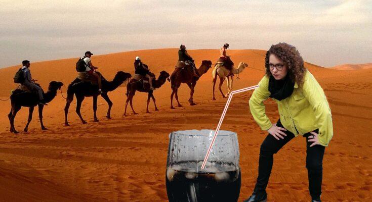Zwei Kamela und eine Cola